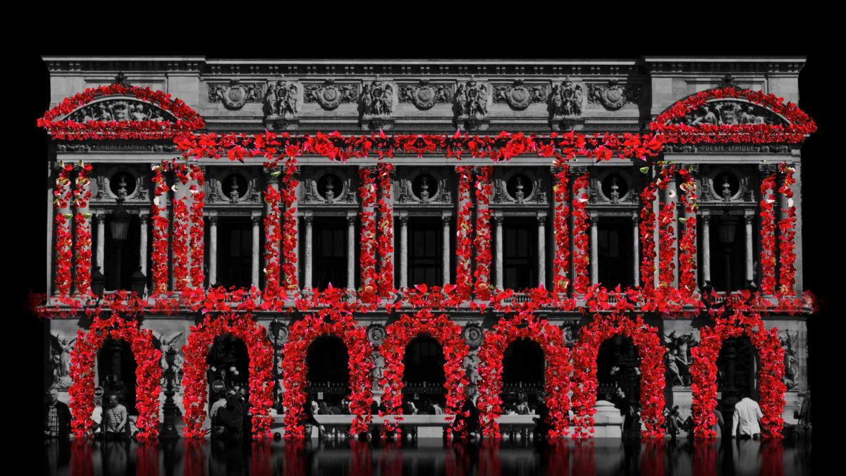 falling petals of rose flower 3d animation for video mapping